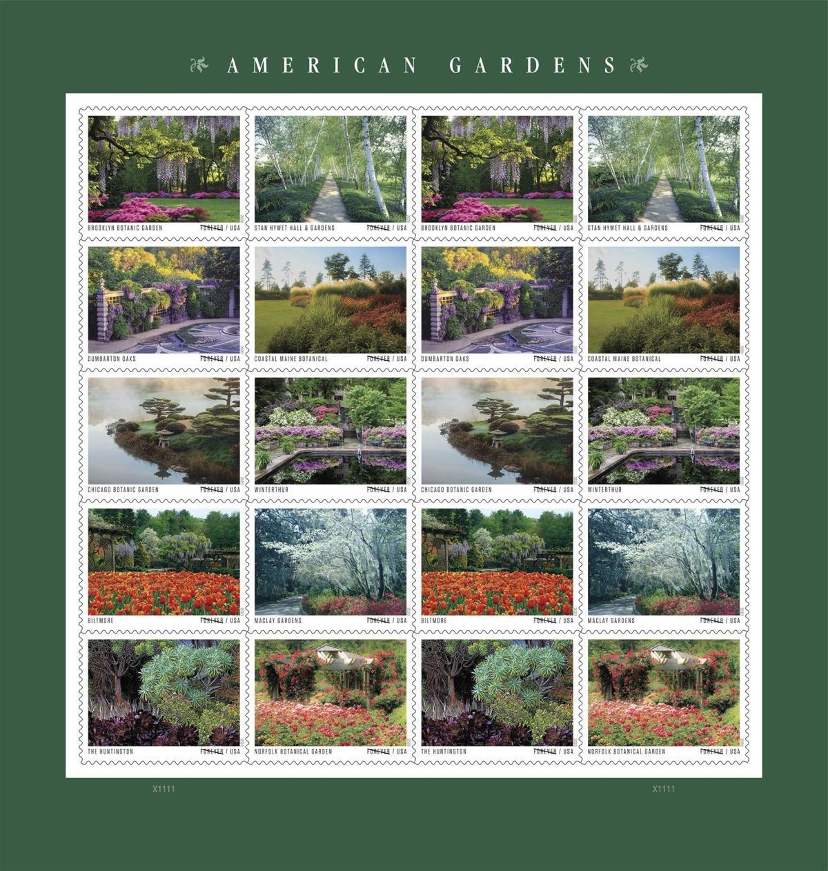 AmericanGardens2020-Pane-v2-BV-v2