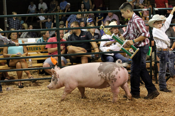 Livestock Show & Sale Sells 132 Head For $181,287.50