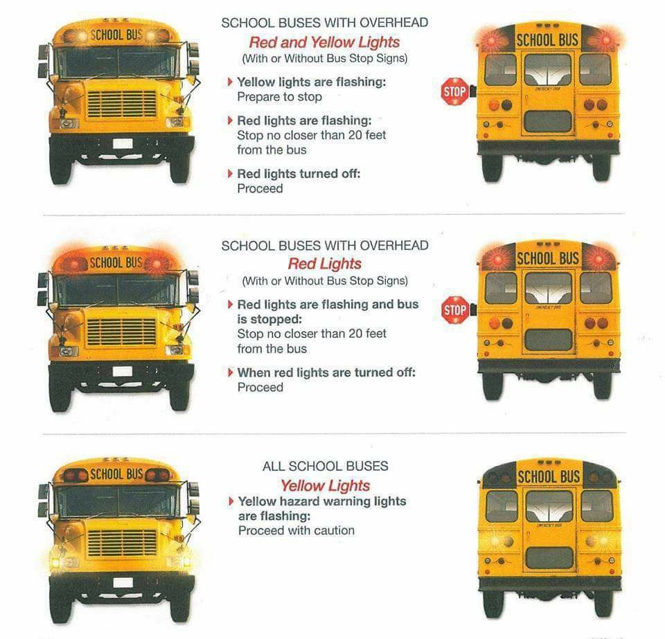 Drivers Reminded To Exercise Caution Around School Buses