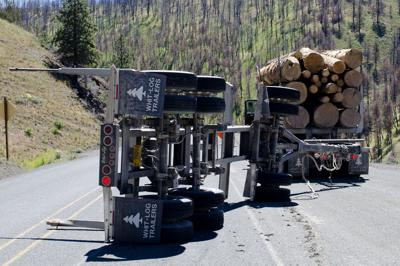 Highway 395 reopened after log truck overturns