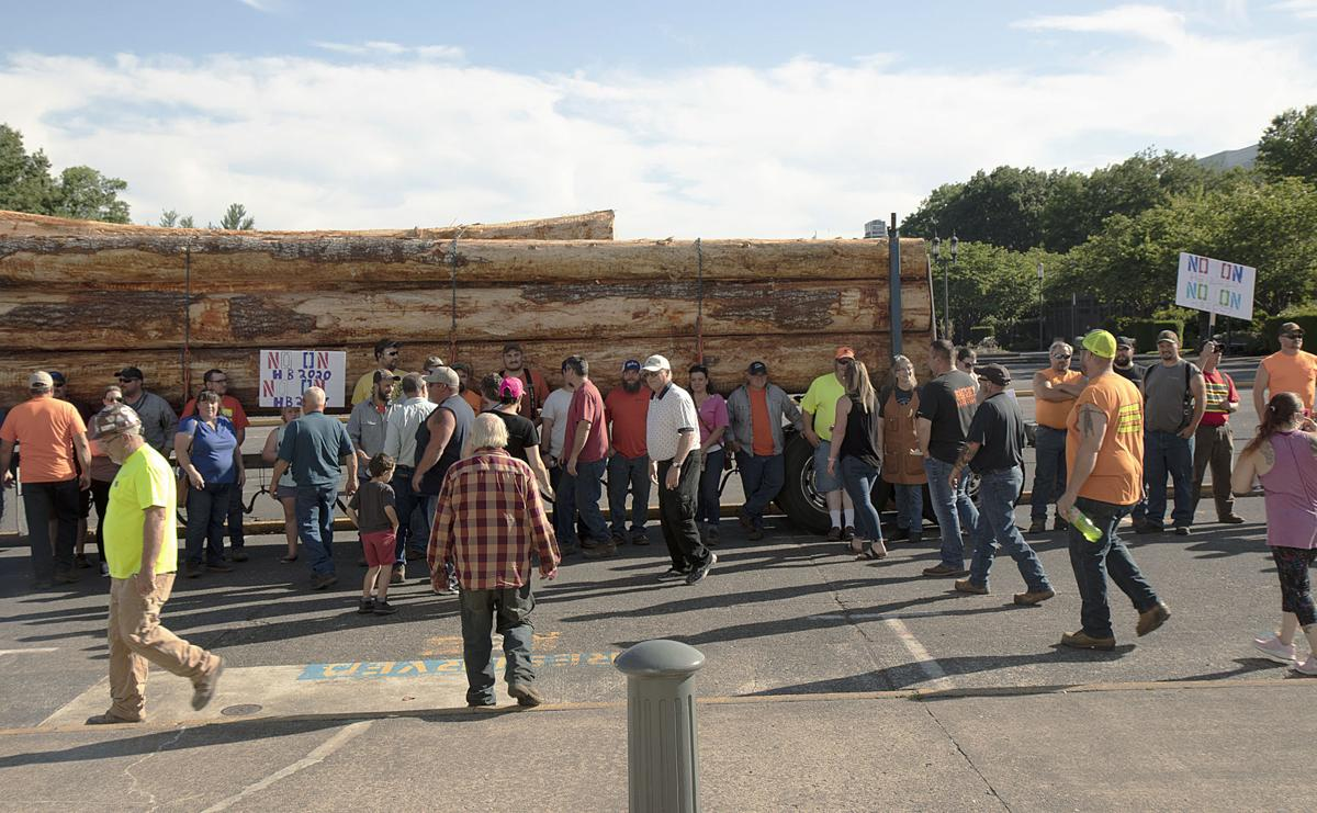 Logger rally at the Capital 3