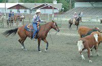 Grant County horse show sparks competition