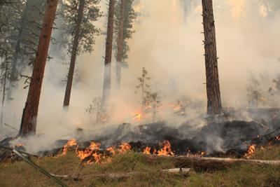 Firefighters work to contain Canyon Creek, two other fires