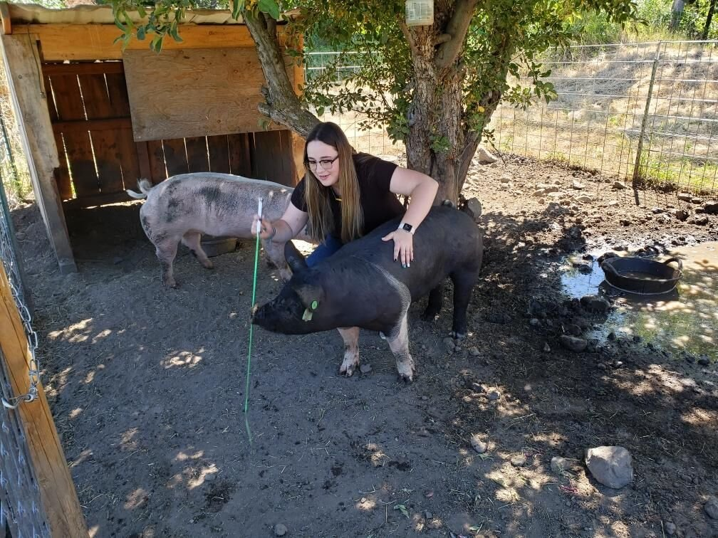 Madison Whitmore with her pig