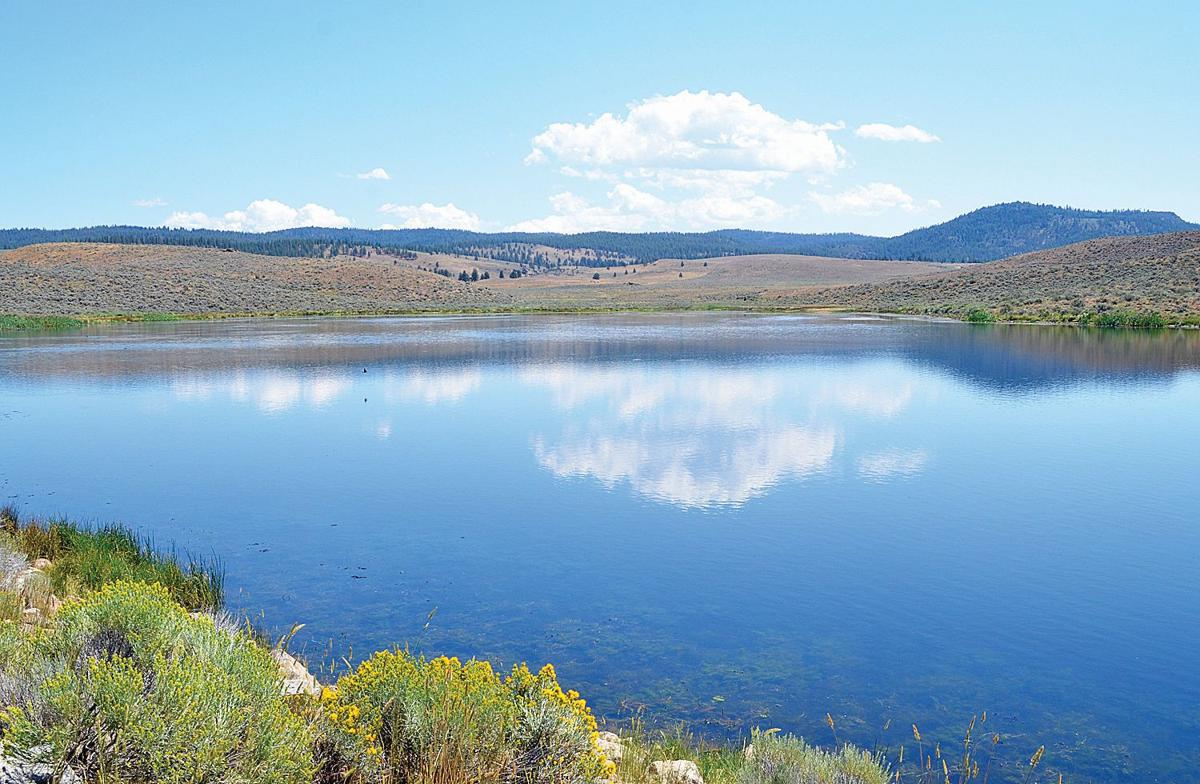 Discover Poison Creek Reservoir