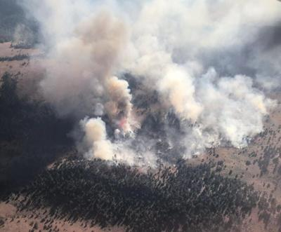 Buck Butte Fire