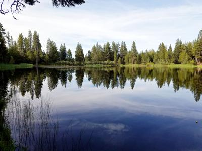 A hike to Aldrich Ponds yields fishing opportunities