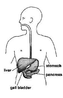 Health NW: Constant stomach pain could be pancreatitis