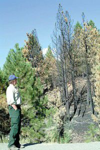 Firefighters dismantle camps in Grant County