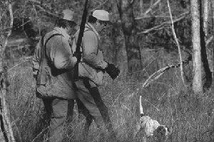September Hunter Safety Awareness Month