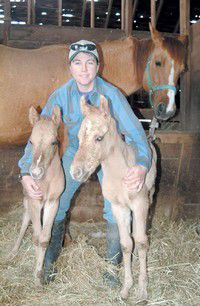 Quarter Horse twins delight Izee owners