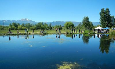 McHaley Pond