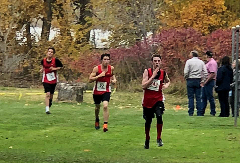Prospector cross country teams compete at district championships