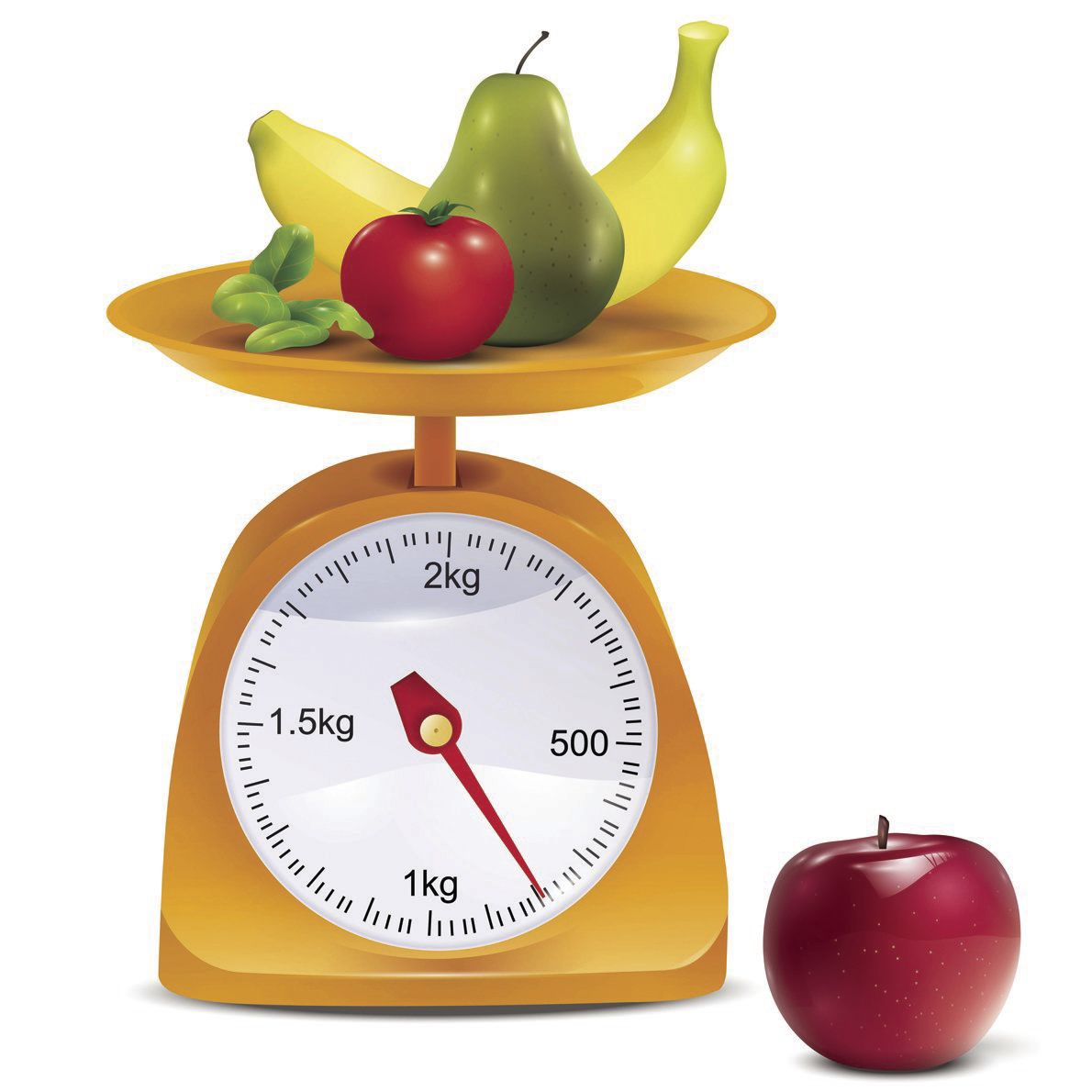 Making healthy eating, physical activity a lifelong habit
