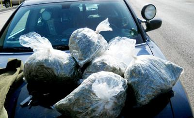 Traffic stop leads to pot bust in Burns