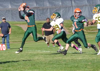 Tigers put up tough fight against Redsides