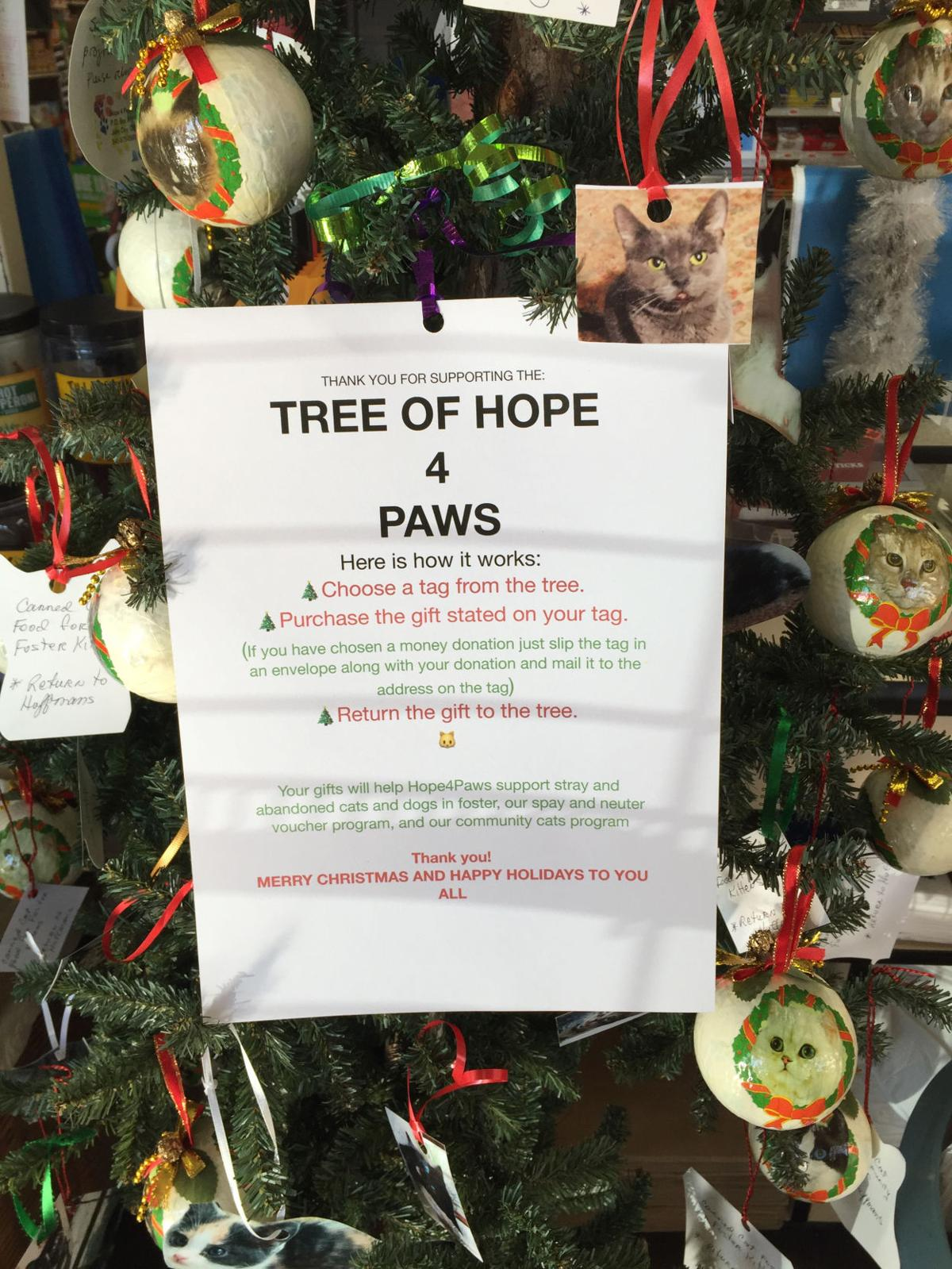 Hope 4 Paws has tree of hope in Prairie City | Life ...