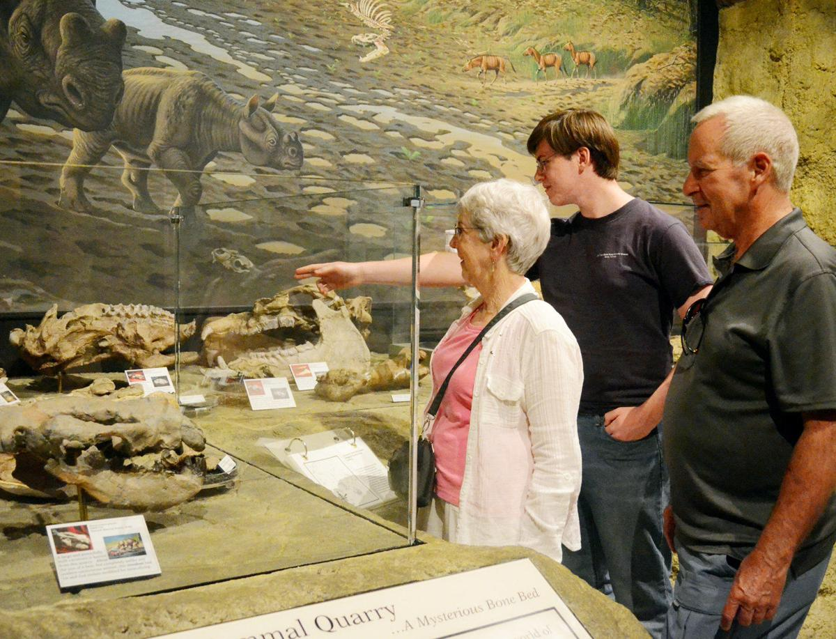 Fossil Beds journey takes visitors to Cenozoic Era