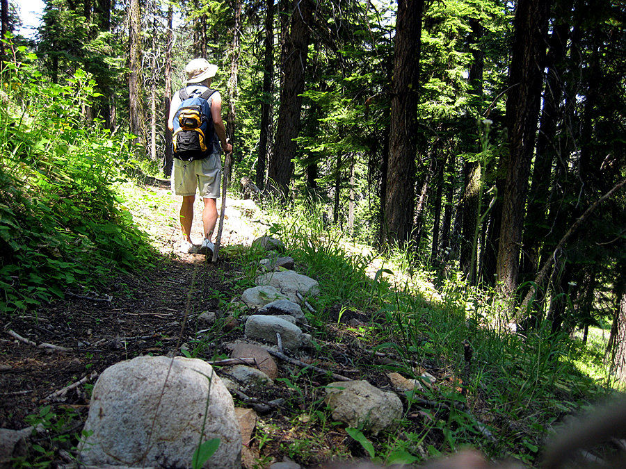 Explore the treasure of Cedar Grove