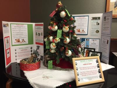 Hope 4 Paws plants Tree of Hope at Squeeze In