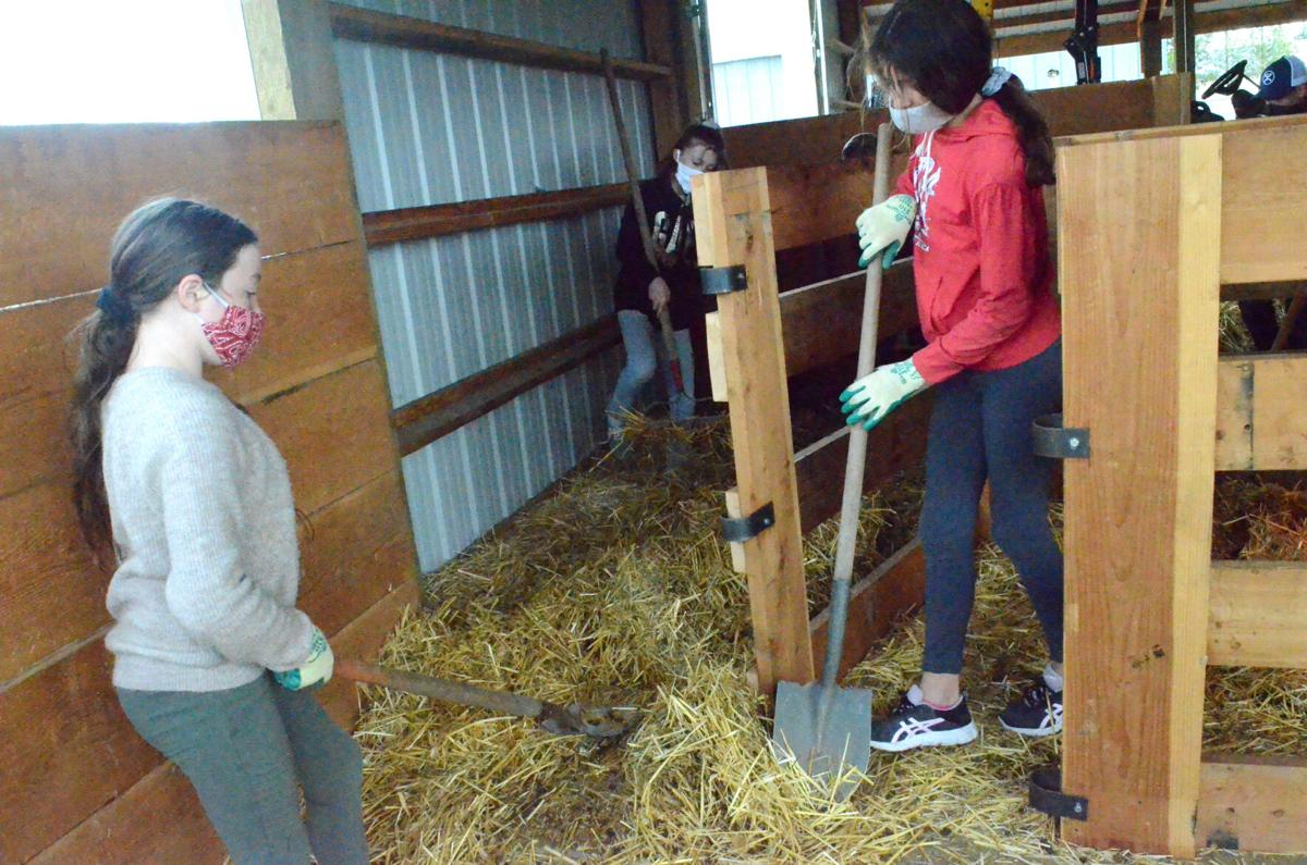 Farm to School at work.jpg