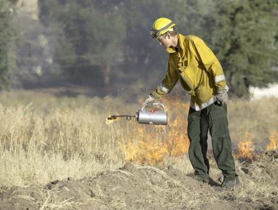 Emigrant Creek Ranger District implements spring prescribed burns