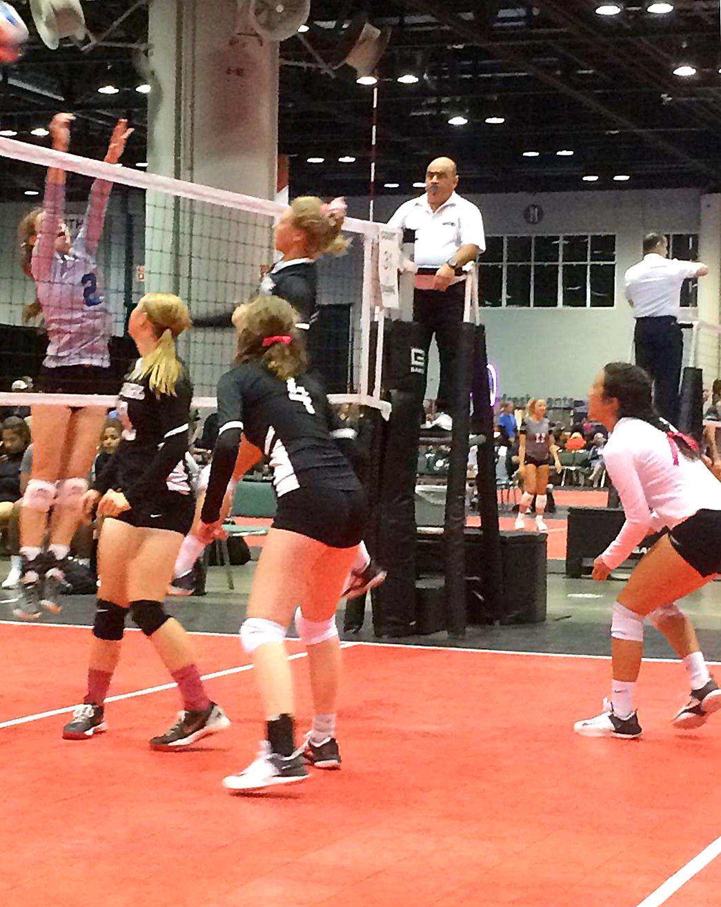 Gold Diggers Aau Volleyball Team Takes On Nationals Sports Bluemountaineagle Com