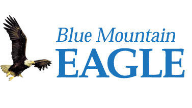 The Eagle wins general excellence at state convention
