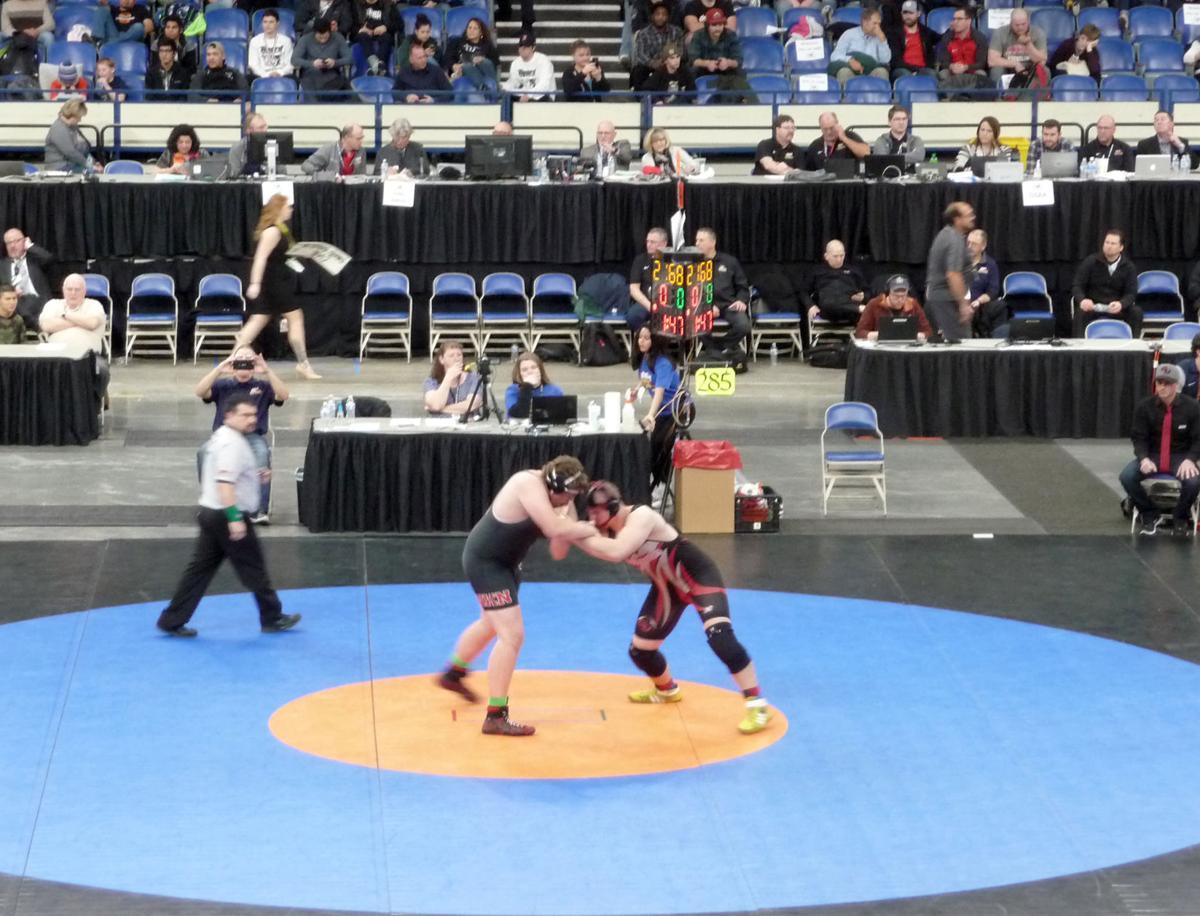 Lusco wins wrestling title