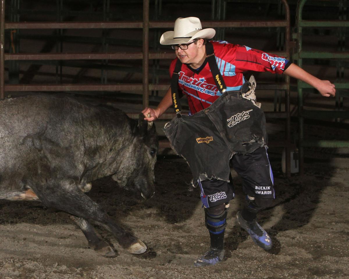 Bull Fights