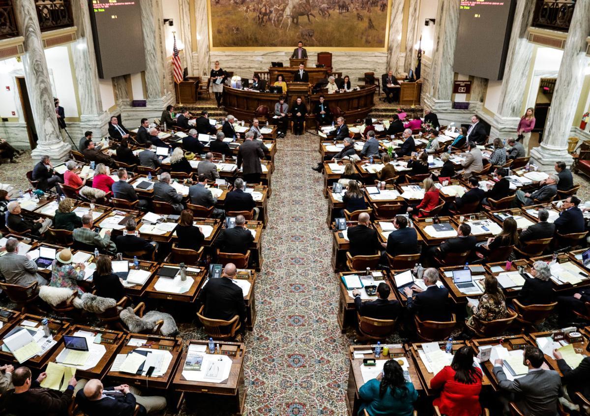 The 2019 Legislature