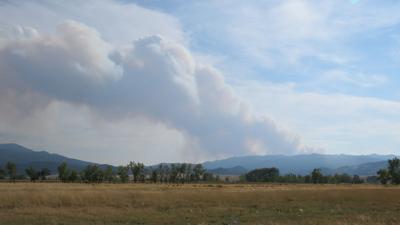 State creek fire.JPG