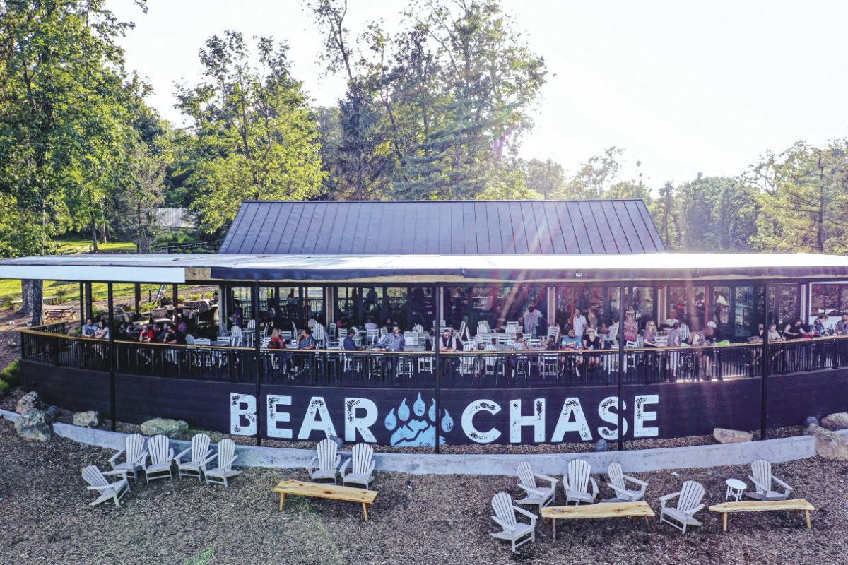 bear chase 4.jpg