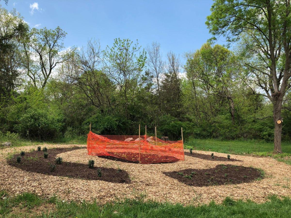 pollinator gardens 1