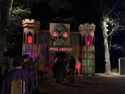 Fear Forest.jpeg