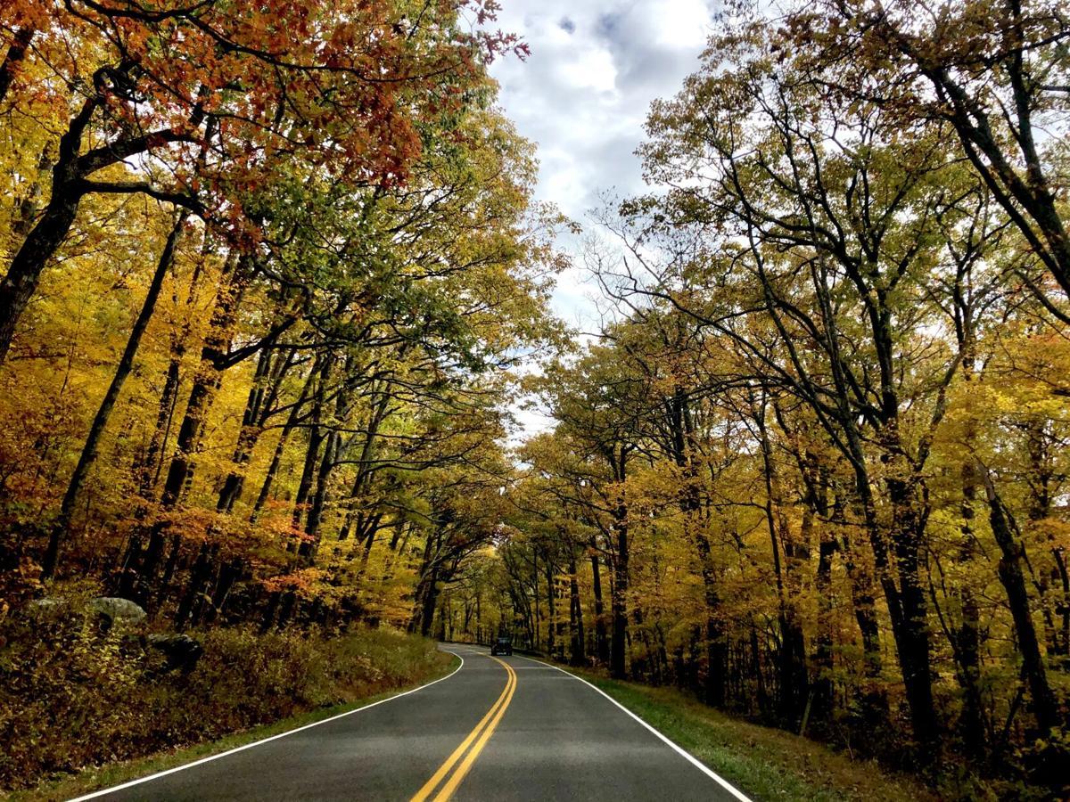 southern heritage - roads.jpeg