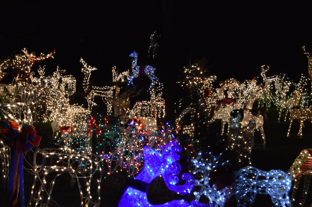 staunton holds 11th annual celebration of holiday lights