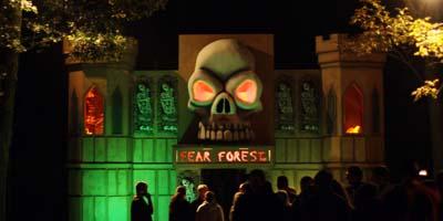 Fear Forest virginia