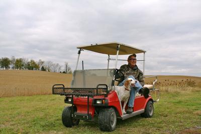 Shooting Golf Cart To Cart Html on toy cart, cart car, ikea kitchen cart, shopping cart,