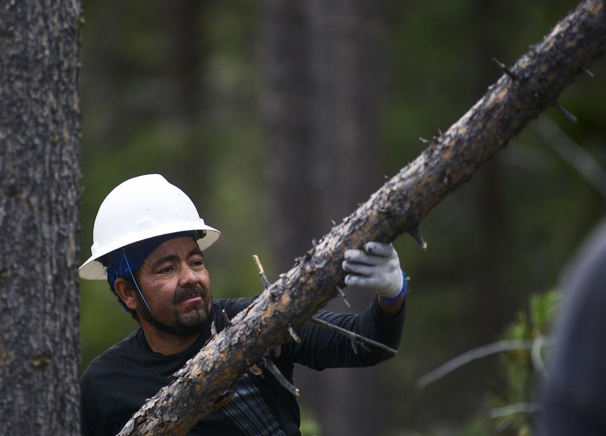 Hector Montes adds another log onto the top of a pile