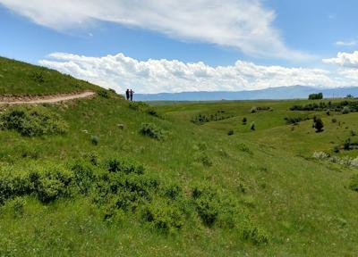 Hidden Hoot Trail
