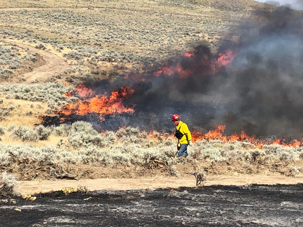 A firefighter walks along the fireline at the brush fire