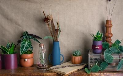 3 Ways to Fuse Art and Nature in Your Home