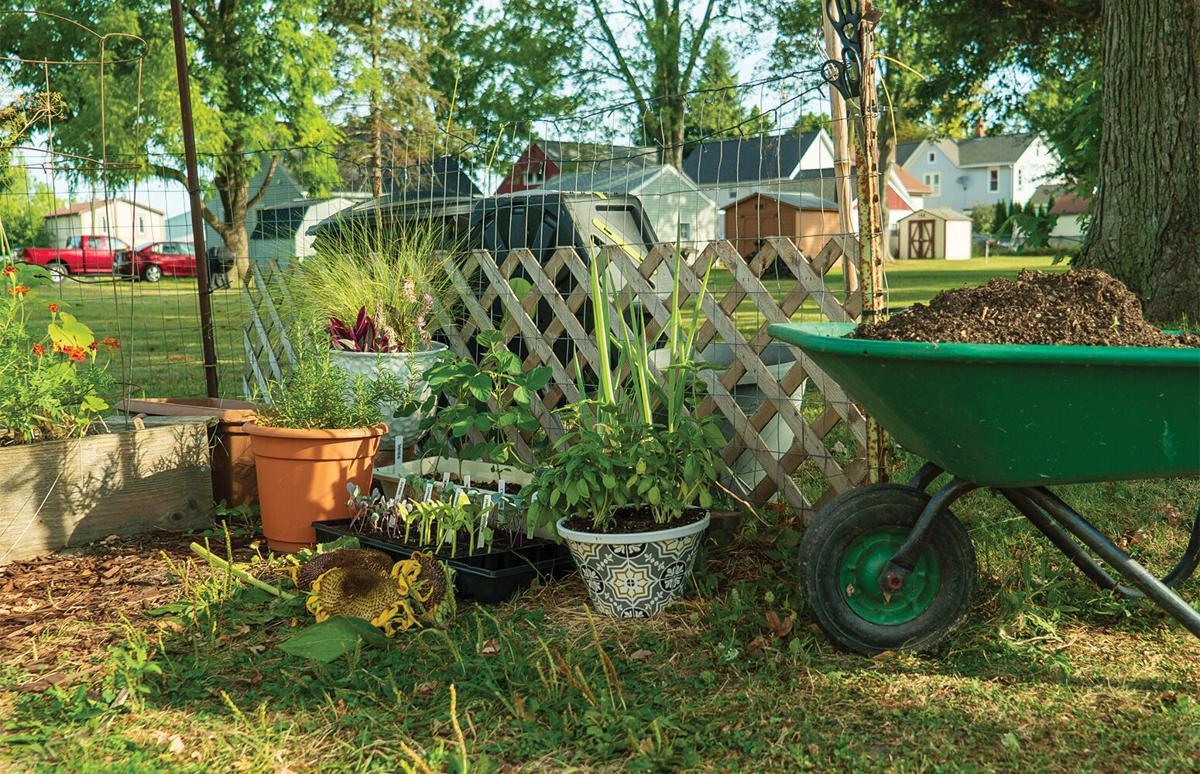 Stephanie Zarbo garden 2
