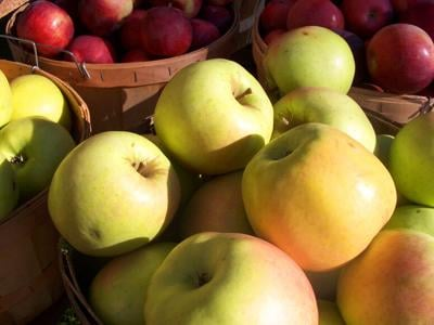 What We Want: New York Apples