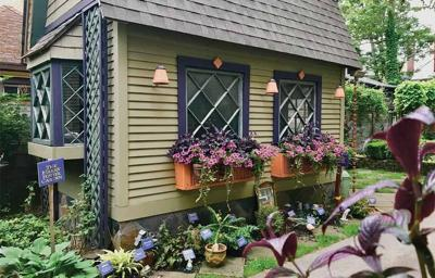Success with window boxes