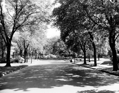 Humboldt Parkway from 1953