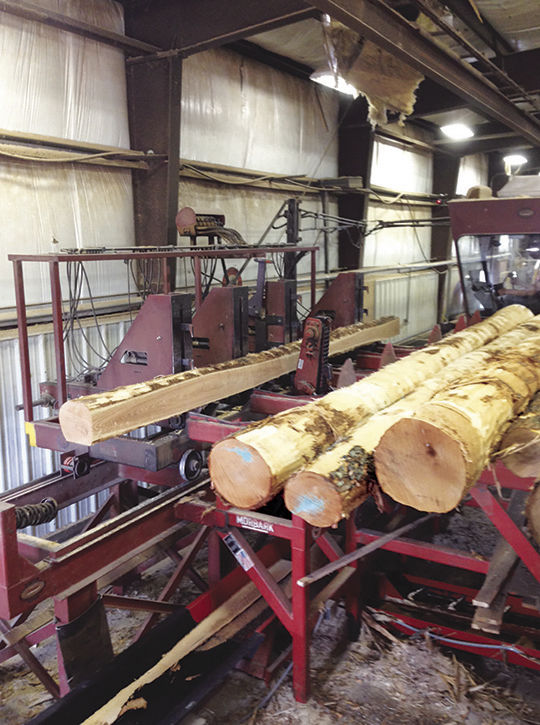 Ashland Mat uses forests products to protect ground