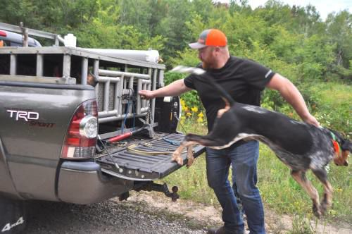Bear hunting tradition alive and well in Northern Michigan