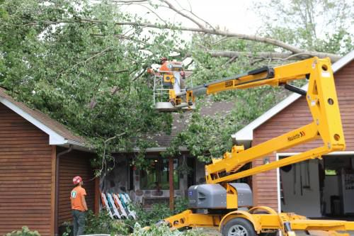 Tree service companies still working to clean up from Aug